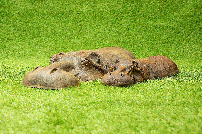 Carte Bleue Rust.Pair Of Rusty Iron Resin Hippo Art Mother Baby Animals