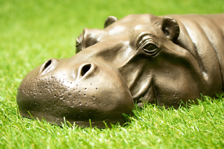 Bronze Resin Hippo Sculpture Hippopotamus Head Birthday Gift Garden Decor