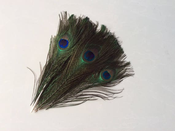 """50pcs 10""""-12"""" Peacock Tail Feathers for Party Wedding Handmade DIY Art Ornaments"""