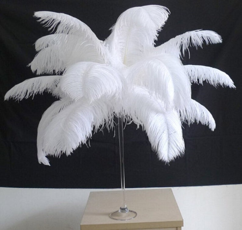 100 White Ostrich Feathers for Wedding centerpieces image 0