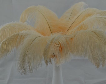 100pcs Ivory corlor ostrich feather for Wedding Table centerpieces,ostrich plumes,ostrich centerpiece,eiffel tower centerpiece