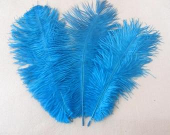 100pcs Aqua/turquoise ostrich feathers,wedding table centerpiece,wedding table decoration,ostrich centerpiece,ostrich feather centerpiece