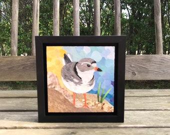 "Original Fine Art Framed Collage Nantucket Plover Shore Bird Small 6x6"""