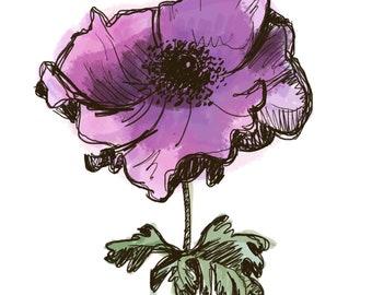 Digital Anemone Flower Illustration