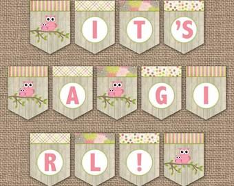Owl Baby Shower Banner, It's a girl, digital PDF file, printable banner, instant download