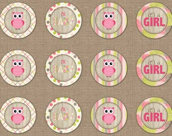 Owl Baby Shower Cupcake Toppers, digital PDF file, printable banner, instant download