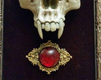 Vampire Revivification Display (Discarded Item # 505)