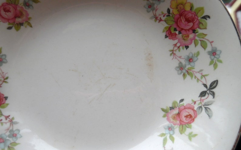 Bread Plates Saucers Floral Pattern Berry Bowls Small Lot of Vintage 1966 Cronin China Plate