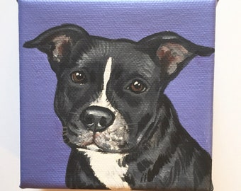 """Custom Pet Portrait / Custom Dog Portrait /Custom Portrait -1 Pet Close-Up Solid background(4x4x1.5"""") Gallery Style"""