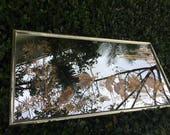 DOWN IN BIRDLAND 49 3 4 Wide Lovely Horizontal Eglomise Mirror With Herons Brass Metal Frame Coastal Decor Regency Decor