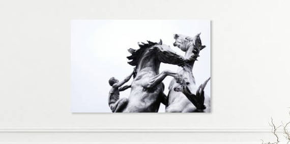 Black White Horse Photography Print Horse Decor Gray Etsy