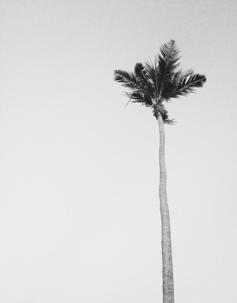Black white beach photography or color minimalist art etsy