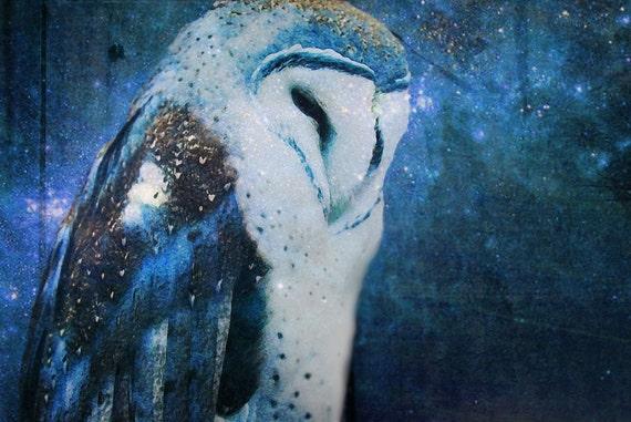 Owls owl art owl painting night stars sky home decor