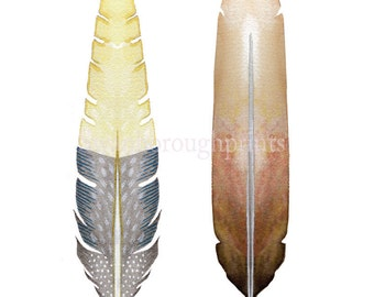 Yellow Gray Bird Feather Print from Original Watercolor. Art & Collectibles Bird Feather Painting Art Print Decorative Art Gift for Friend