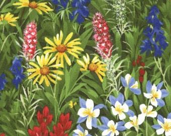 Texas Wildflowers BASICS Moda fabric  by the HALF yard 100% quilt weight cotton bluebonnets summer 32361-11