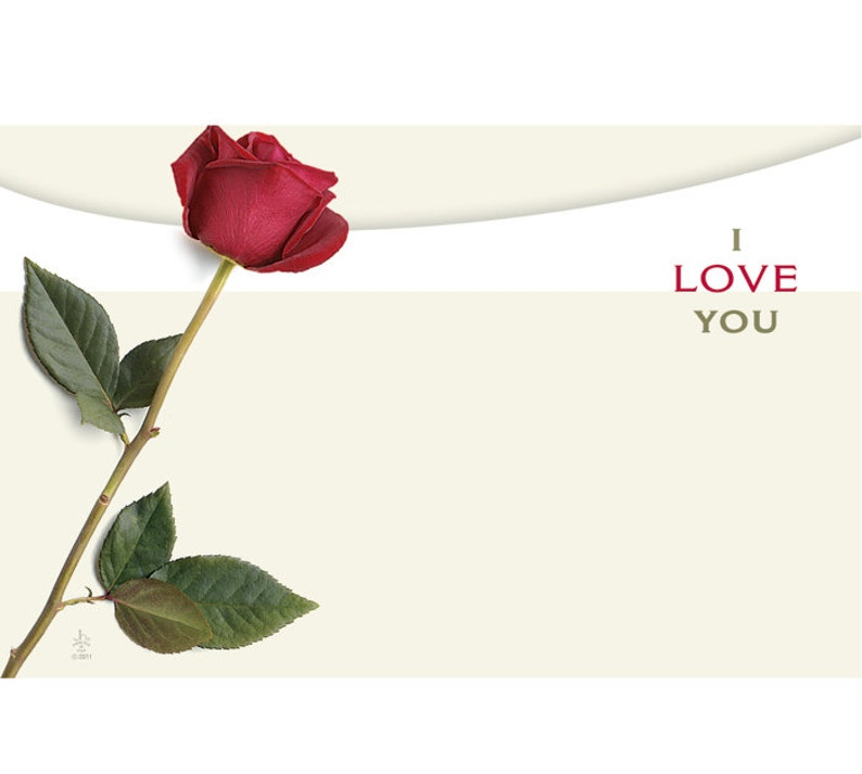 50 ROSE I Love You Floral Print Florist Blank Enclosure Cards Small Tags Crafts Free Shipping!
