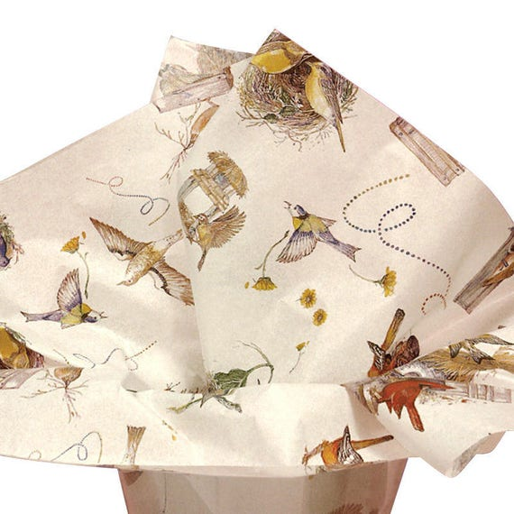 Birds Nest Bird Lovers Bird Houses Gift Wrap Tissue Paper--10 Patterned Sheets Large 20 x 30
