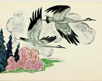 Birds, Vintage Russian Postcard unused 1968