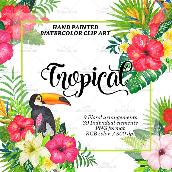 Watercolor Tropical Flowers Clipart Watercolor Flower Clip Etsy