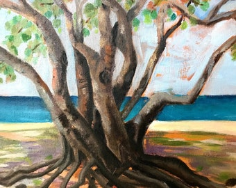 Seagrape Tree Oil Painting Nature Painting Original Oil 9x12
