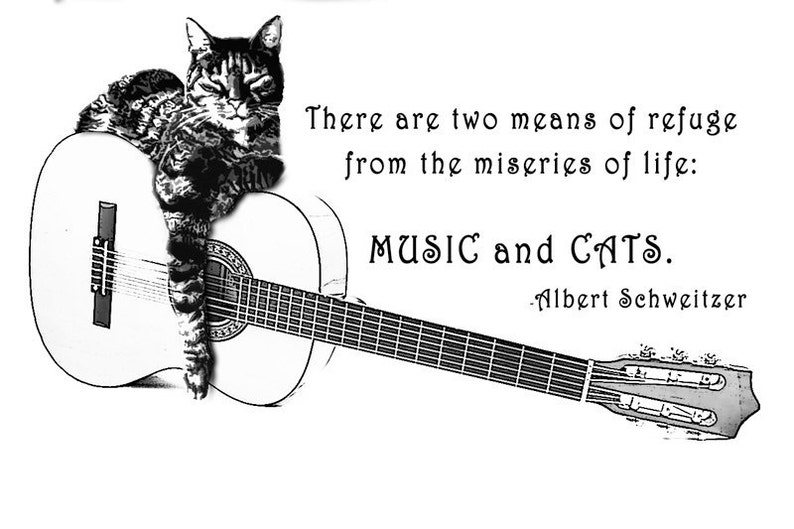 CAT and GUITAR T Shirt two means of refuge from Music and Cats image 0