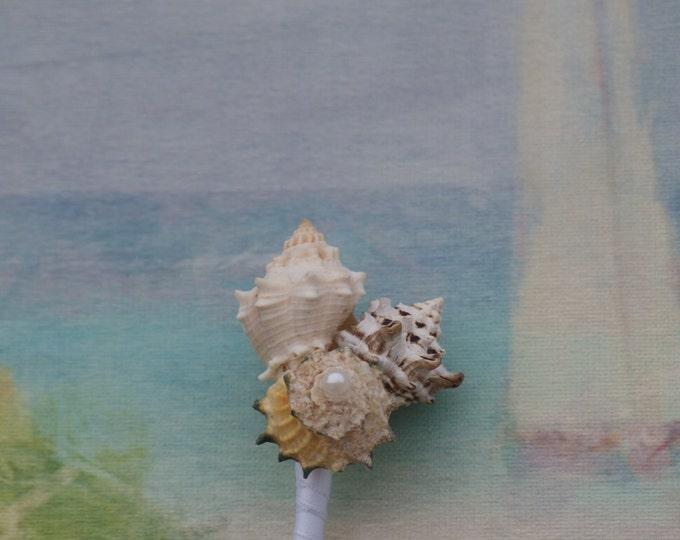 Groom and Groomsmen boutonnieres, seaside, beach wedding