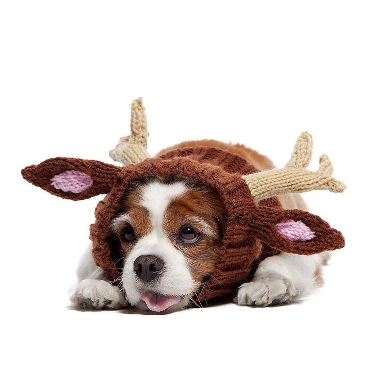 Reindeer Dog Snood  Knit Crochet Dog Hat with Antlers  medium