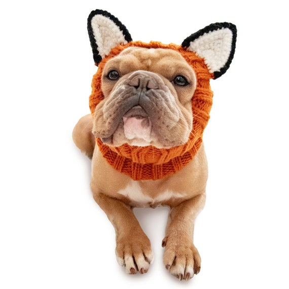 dog accessory snood snood for dog Woodland Friends Fox Dog Hat Crochet dog hat