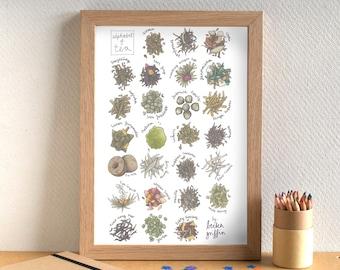 Tea Alphabet Print - Gift for Tea Lover - Food Art Print - tea gift - tea art - alphabet of tea - alphabet of tea leaves