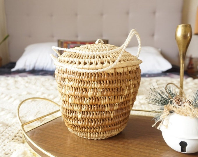 Bohemian Woven Straw Grass Basket with Lid and Rope Handle
