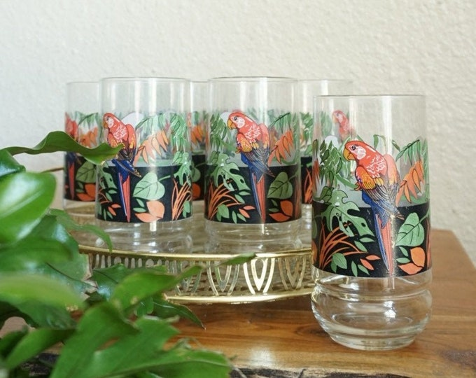 Vintage Parrot Monstera Palm Plant Tumbler Glass Set of 8