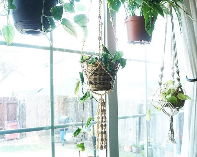Hanging Seashell Plant Hanger