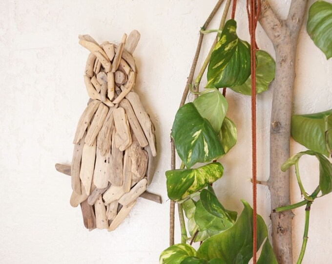 Vintage Owl Driftwood Art Wall Hanging
