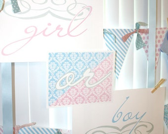 Personalized and Custom Baby Gender Reveal Party-Banner Printed and Shipped