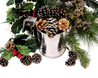 Small Pine Cones, Nature Findings, Fall Autumn Christmas Woodland Holiday Home Decor, Basket Bowl Fillers, Craft Supply itsyourcountry