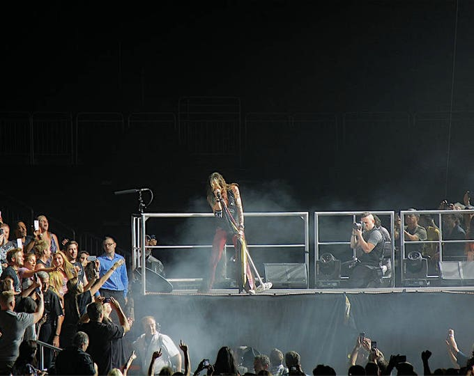 Steven Tyler in Concert