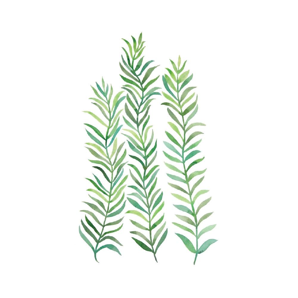 Grüne Reben 4 x 6-8 x 10 drucken böhmischen Aquarell Kunst