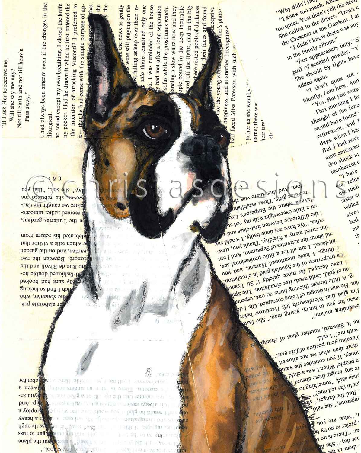Flashy Fawn Boxer 8x10 Art Print
