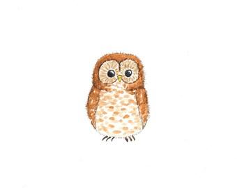 Baby Owl Print - 5 x 7 - Woodland Nursery Decor - Kids Wall Art