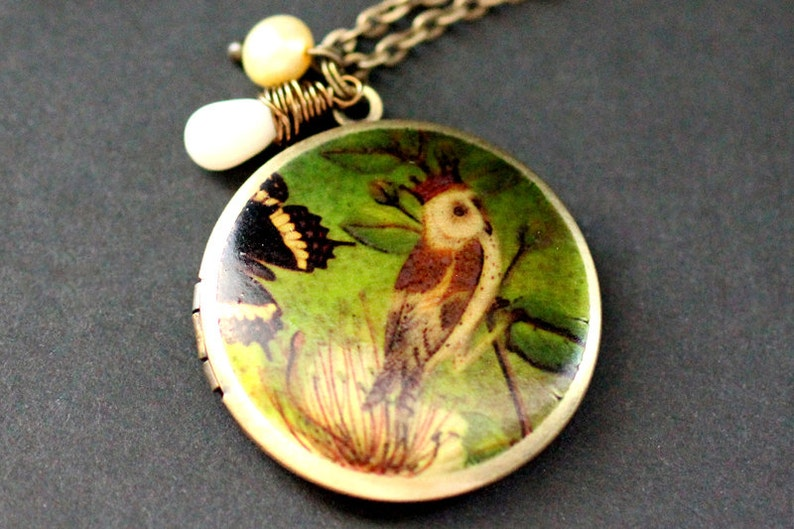 King Owl Locket Necklace. Owl Necklace with White Coral image 0