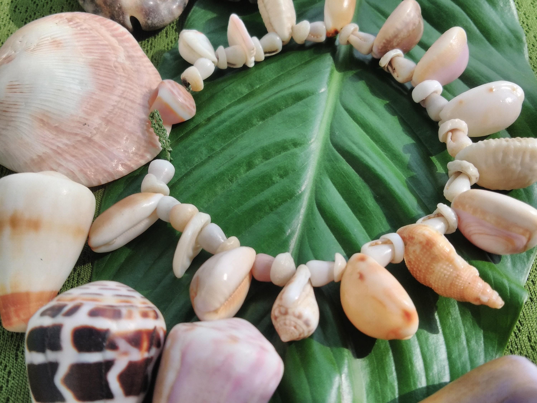 Puka Shell Anklet -Cowry Shell Anklet Kauai Shells Mermaids