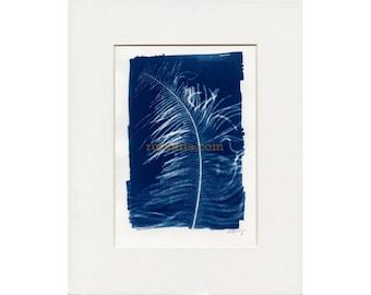 Feather - Cyanotype Unique Print