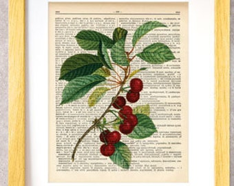 Cherry fruit dictionary print-Kitchen wall art-fruit on book page-Fruit print-Botany print-Dictionary print-cherry print-NATURA PICTA-DP001