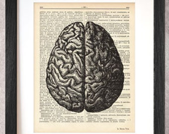 Brain print-brain dictionary print-Anatomy print-brain on book page-anatomical wall art-brain poster-anatomy print set-by NATURA PICTA-DP035