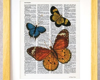 Butterfly print-butterflies print set-butterfly on book page-butterfly dictionary print-rustic decor-insect print-by NATURA PICTA-DP049