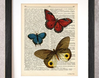 Butterfly print-Butterflies dictionary print-Butterfly print-Garden print-rustic print-butterfly home decor-insect print-NATURA PICTA-DP061