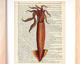 Squid print-squid dictionary print-coastal print-squid book page-ocean wall art-beach decor-coastal print-Christmas gift-NATURA PICTA-DP116