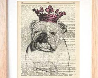 English bulldog Princess dictionary print-english bulldog print-bulldog book art-dictionary print-home decor-dog print-by NATURA PICTA-DP097
