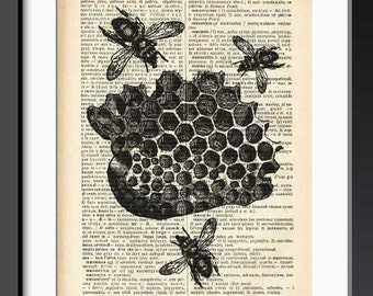 Bee insect print-Bee insect dictionary print-insect print-Bee insect on book page-botanical print-home decor-bee decor-by NATURA PICTA-DP149