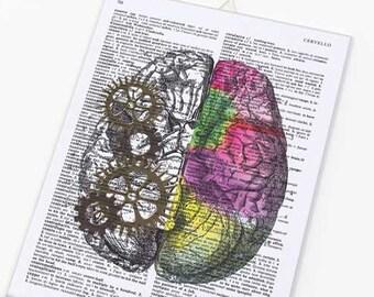 Left right brain canvas board-brain wall art-anatomy wall art-human brain wall art-medical office decor-brain-doctor gift-NATURA PICTA-CB029